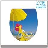 Sommerzeit-Entwurfs-Standardgrößen-Toiletten-Sitz