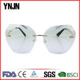 2017 Nuevo Popular Unisex elegante claro lentes gafas de sol