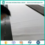 Press Felt/Press for Fabric Paper Machine