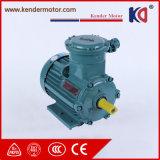 Motor elétrico assíncrono da C.A. da indução elétrica da Ex-Prova Yb3-80m-4