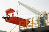 Bateau de pivotement de bras et davier simples de radeau avec le davier de bateau de sauvetage de grue rapidement avec le prix concurrentiel