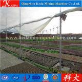 いちご、ブドウ、農業の温室のためのMultispanのトンネルの温室
