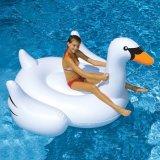 Bekanntmachen des aufblasbaren erwachsenen Pool-Wasser-Gleitbetriebs für Verkauf