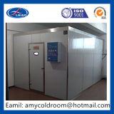 Construir um quarto frio para fabricantes do quarto frio da venda