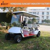 De Kar van het Golf van de douane (het lichaam van de auto EZGO), de Aangepaste Elektrische Kar van het Golf, Elektrische die Auto 4 Seater in Pretpark wordt gebruikt