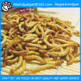 De Droge Meelwormen van het Voedsel voor huisdieren van de hoogste Kwaliteit