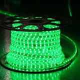 Indicatore luminoso viola della corda di colore rosso 60LEDs SMD5050 220V IP65 LED