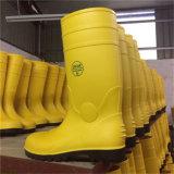 남자 강철 발가락 긴 시동 안전의 중국 공장 가격