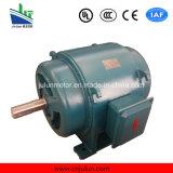 Motor asíncrono trifásico Js136-6-240kw de la trituradora del motor de la CA de la baja tensión de la serie de Js