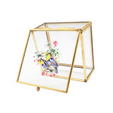 Kundenspezifisches goldenes Glasmetallglasschmucksache-Kasten Jb-1063