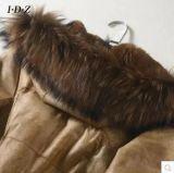 カラー女性の長い様式のアライグマの毛皮が付いている実質のウサギの革そして毛皮のコート