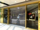 Прозрачные стеклянного вертикального подъема поликарбоната секционные свертывают вверх дверь гаража (Hz-TD0616)