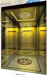 Constructeur d'ascenseur de passager de la Chine LMR