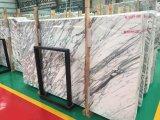 Marbre italien de marbre blanc de pente d'Arabascata premier