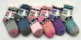 De Sokken van het jonge geitje/de Sokken van Kinderen/de Voorraad van /Socks van Homesocks/van de Sokken van de Baby