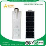 LiFePO4電池との1太陽LEDの動きセンサーの照明の30Wすべて