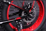 脂肪質のタイヤの電気バイクの電気自転車