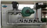 Macchina dell'essiccatore del gas naturale/asciugatrice industriale/grande macchina di secchezza 150kgs della chiavetta