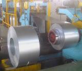 صاحب مصنع [بربينت] لون بيضاء يغلفن فولاذ ملا