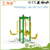 Park Fitness Equipment Outdoor Playground (MT / OP / FE1)