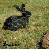 Cerca del conejo de Sailin con el alambre hexagonal