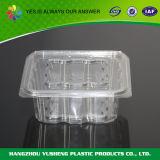 Le conteneur articulée/de bloc supérieur couvercle, choient le conteneur de nourriture remplaçable