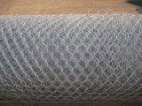 La Jaula de malla de alambre galvanizado Gabion con forma hexagonal