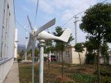 600W horizontal fora do sistema de gerador da turbina do vento da grade