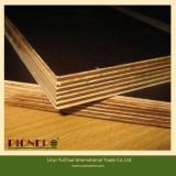 18mm Combi Core Melamine Glue Brown Film Faced Plywood