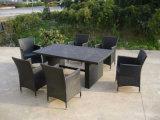 Mesa De Comedor silla de mimbre al aire libre muebles de mimbre (FS-2060+ FS-2061)