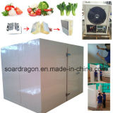 Комната хранения овощей при температуре +4 около 5 градусов C