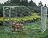Canis galvanizados do cão do funcionamento do cão da ligação Chain
