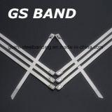 De dikke Band van de Kabel van de Band van het Roestvrij staal