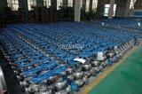 Valvola a saracinesca dell'acciaio di getto OS&Y per il prezzo basso dell'acqua