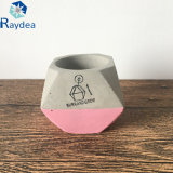Cemento ronda Pot con asas para un suculento