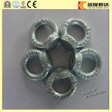 Boulon d'oeil d'acier inoxydable DIN580 de Chine