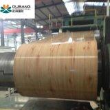 Feuille d'acier galvanisé prélaqué SGCC PPGI dans la bobine (PPGI)