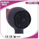 Cepillo caliente del secador del soplo de 2 velocidad del motor de la CA y de la C.C. herramientas de la mejor