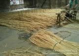 Hastes florais de bambu