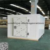 Conservación en cámara frigorífica modular profesional para las patatas