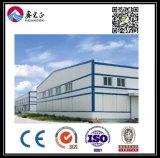 Entrepôt personnalisé par qualité de structure métallique (BYSS029)