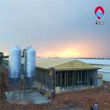 Las aves de corral del equipo de las aves de corral/del equipo de la casa de pollo contienen el sistema de cultivo completo