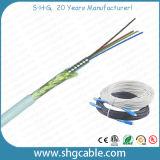 L'intérieur du câble à fibre optique FTTH blindé (AMB-xC)