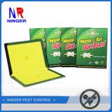 Paper Board Rat les pièges de la colle adhésif solide