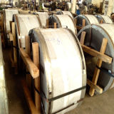 Semi bobine de cuivre inférieure d'acier inoxydable de Ddq