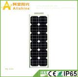 A garantia nova 30W do projeto 5years escolhe a câmara de ar integrou tudo em uma luz de rua solar com a bateria da vida Po4
