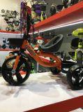 Triciclo del bambino del bambino di prezzi di fabbrica del nuovo modello del triciclo dei capretti migliore a buon mercato forte