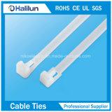 Serre-câble en nylon normal de résistance à la traction avec la marqueterie d'acier inoxydable