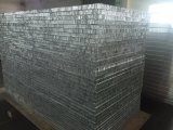 Panneau en aluminium de nid d'abeilles de la Chine (heure P040)