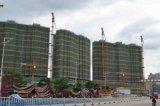 Tc-365 et grue à tour de construction de construction du poids 12tons d'élévateur